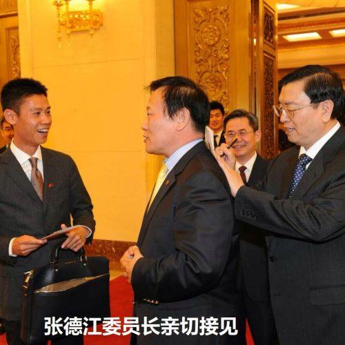 张德江委员长亲切接见